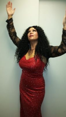 Diana Ross Tribute Acts Acts