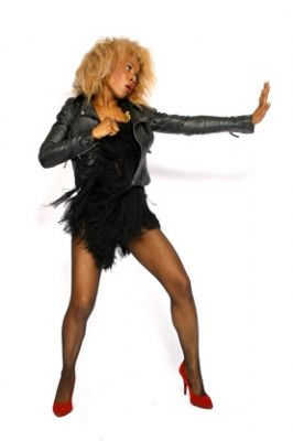 The Tina Turner Show